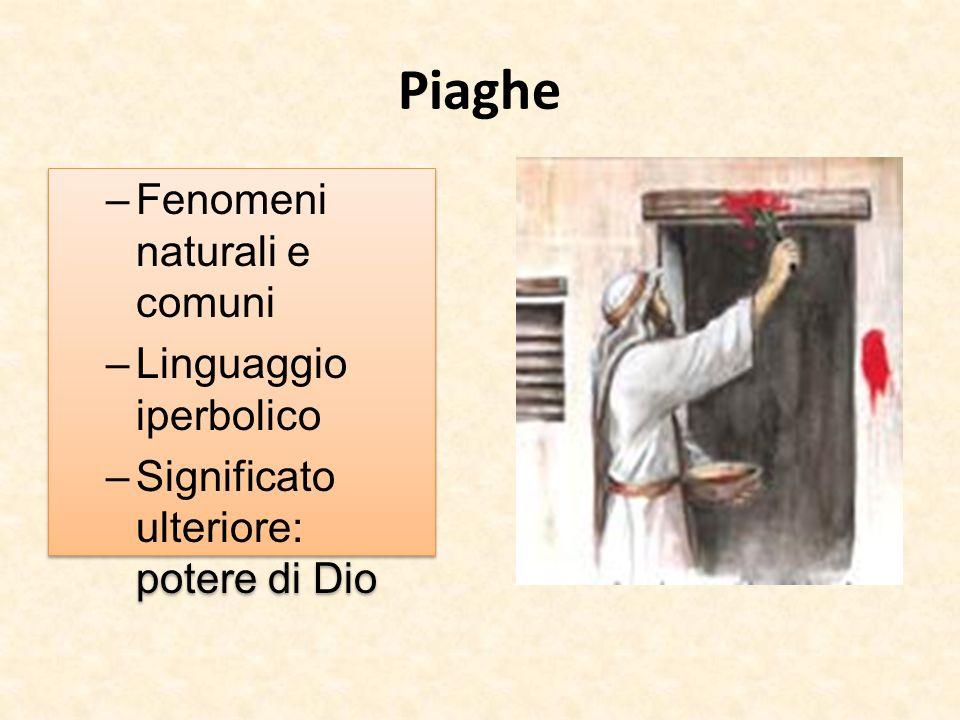 Piaghe Fenomeni naturali e comuni Linguaggio iperbolico