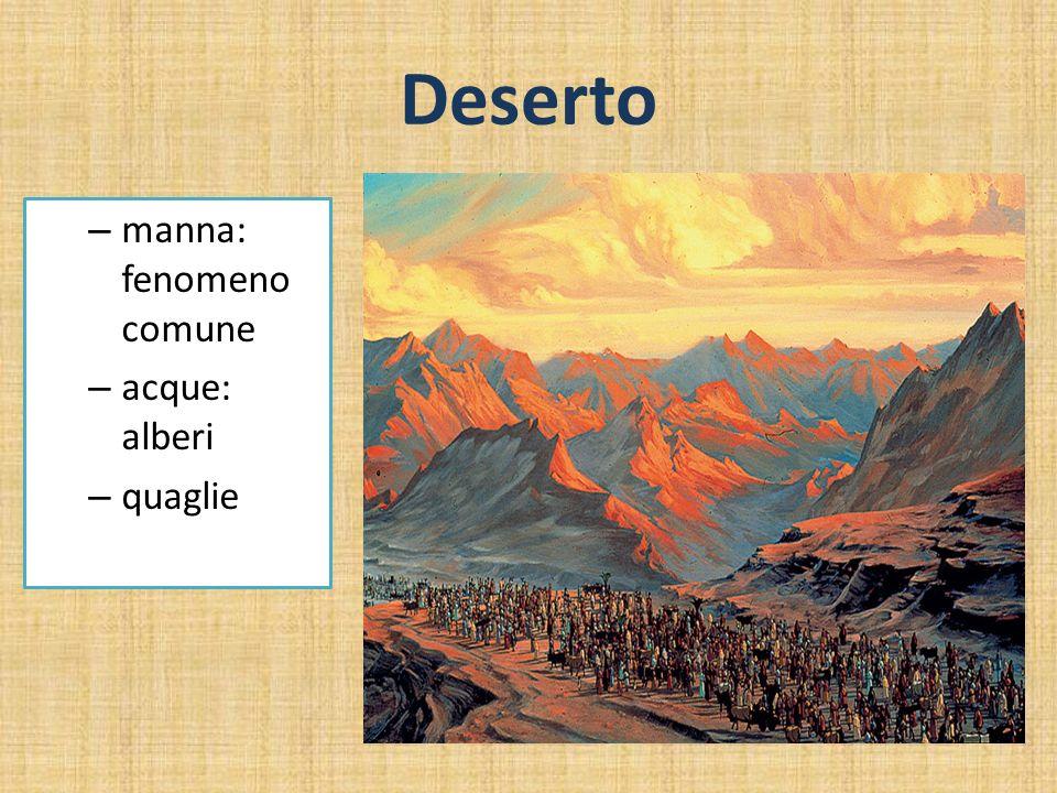 Deserto manna: fenomeno comune acque: alberi quaglie