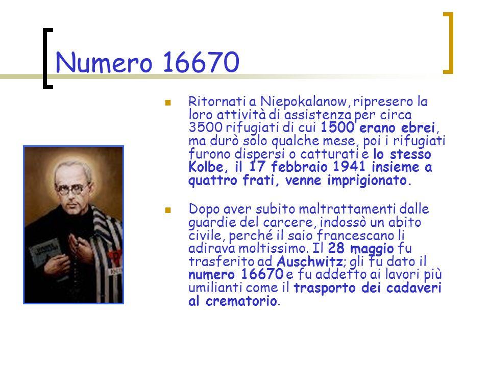Numero 16670