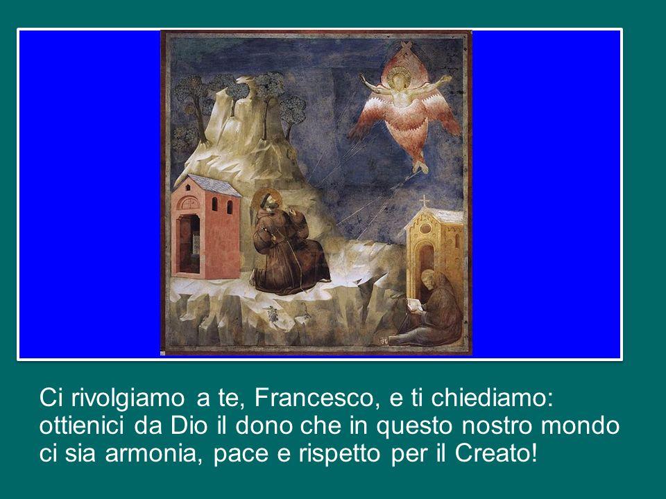 Ci rivolgiamo a te, Francesco, e ti chiediamo: