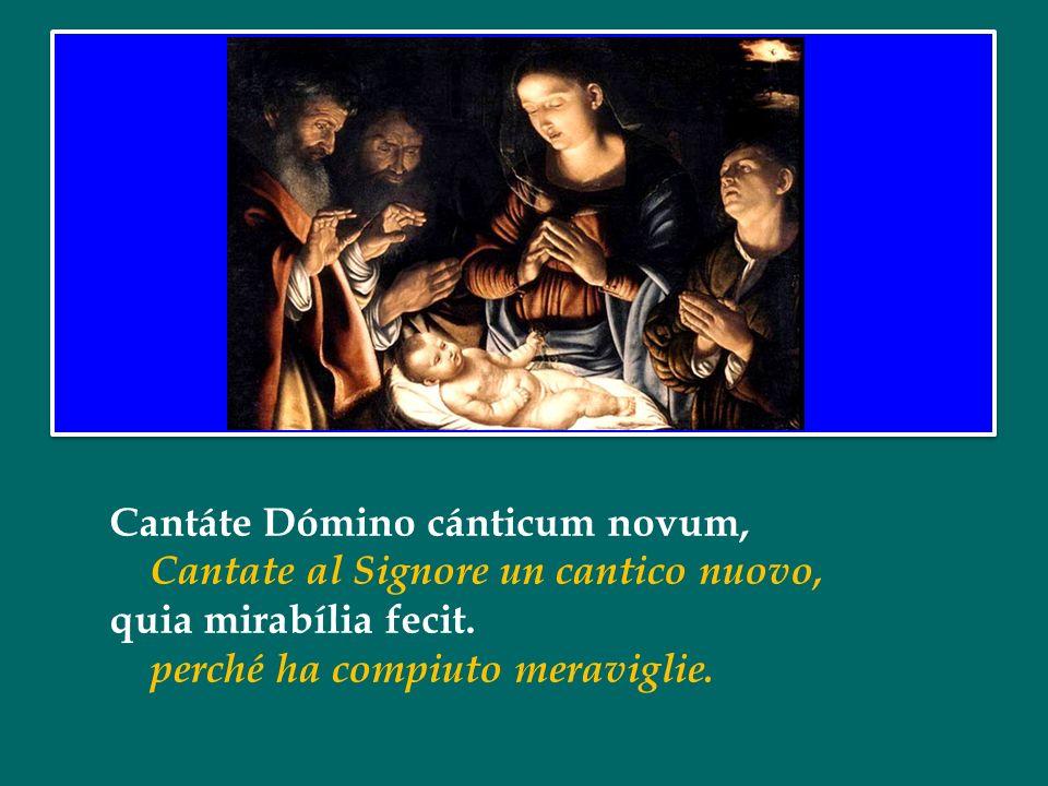 Cantáte Dómino cánticum novum, Cantate al Signore un cantico nuovo, quia mirabília fecit.