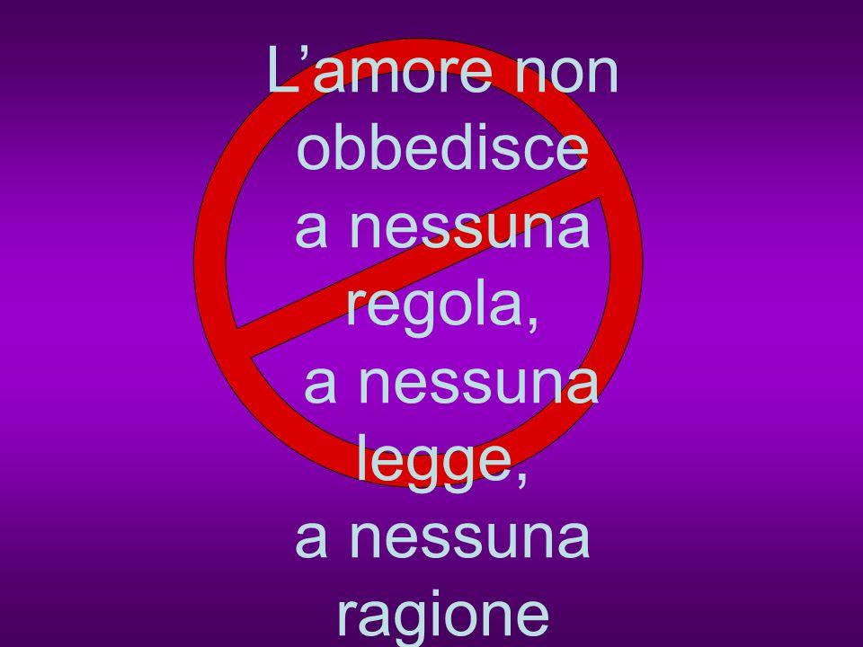 L'amore non obbedisce a nessuna regola, a nessuna legge, a nessuna ragione