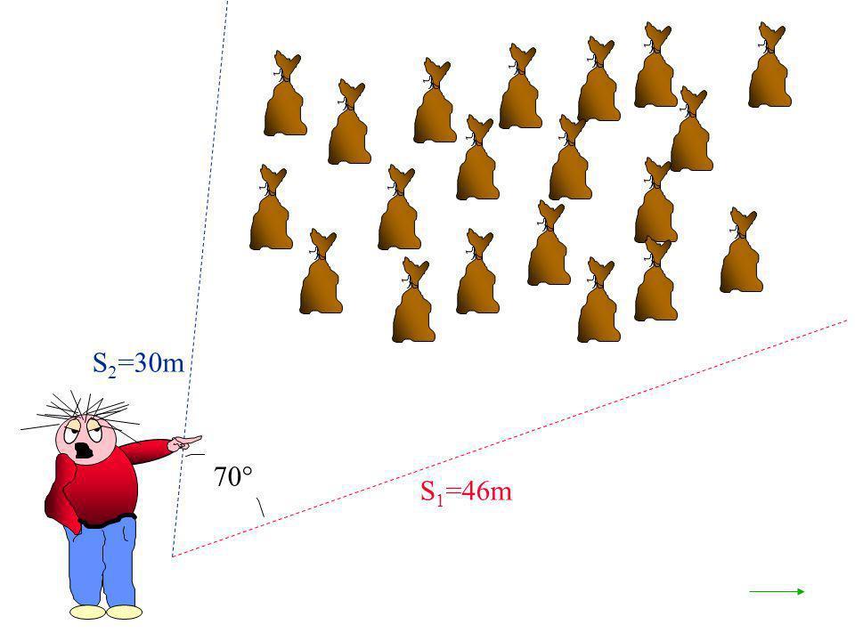 S2=30m 70° S1=46m