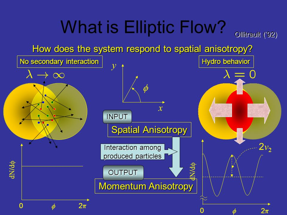 How does the system respond to spatial anisotropy