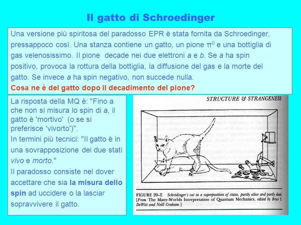 Il gatto di Schroedinger