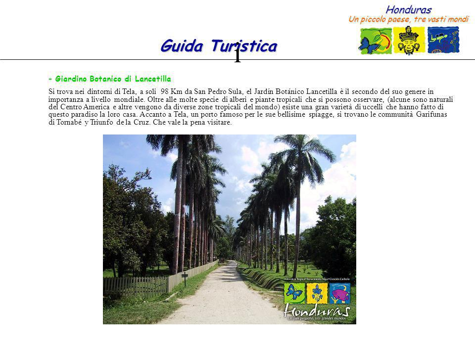 i Giardino Botanico di Lancetilla