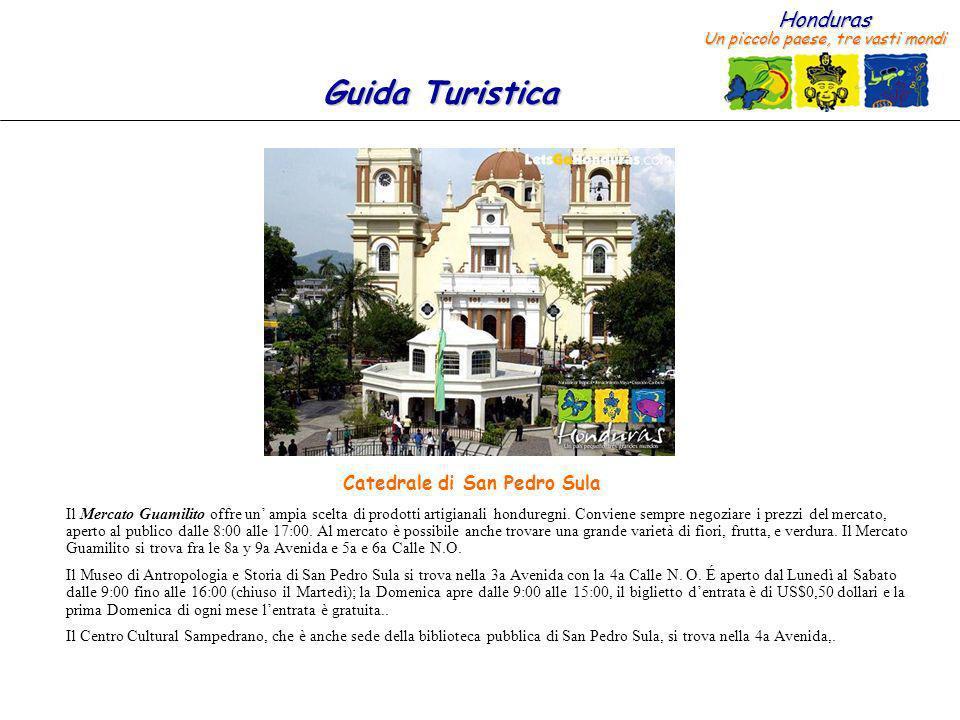 Catedrale di San Pedro Sula