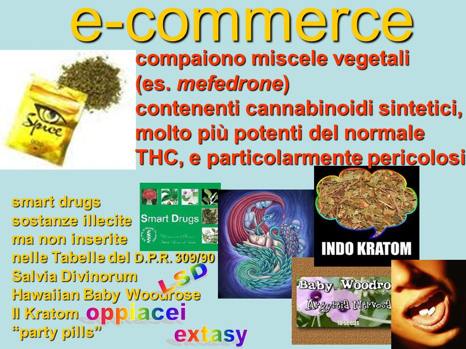 e-commerce LSD oppiacei extasy compaiono miscele vegetali