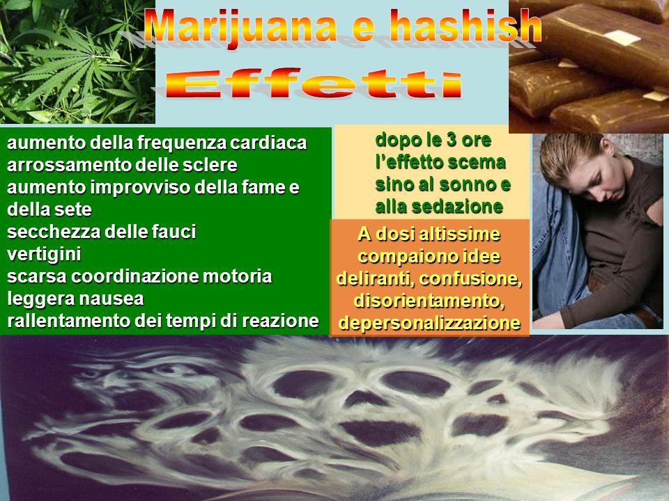 Marijuana e hashish Effetti. aumento della frequenza cardiaca. arrossamento delle sclere. aumento improvviso della fame e della sete.