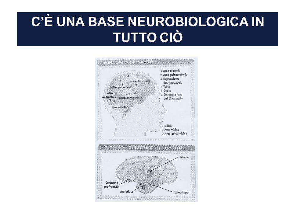 C'È UNA BASE NEUROBIOLOGICA IN TUTTO CIÒ