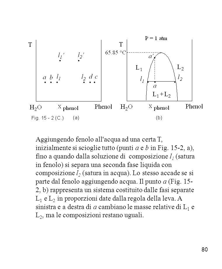 Aggiungendo fenolo all acqua ad una certa T, inizialmente si scioglie tutto (punti a e b in Fig.