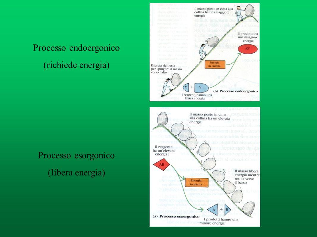 Processo endoergonico