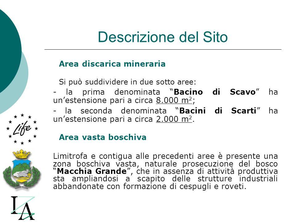 Descrizione del Sito Area discarica mineraria