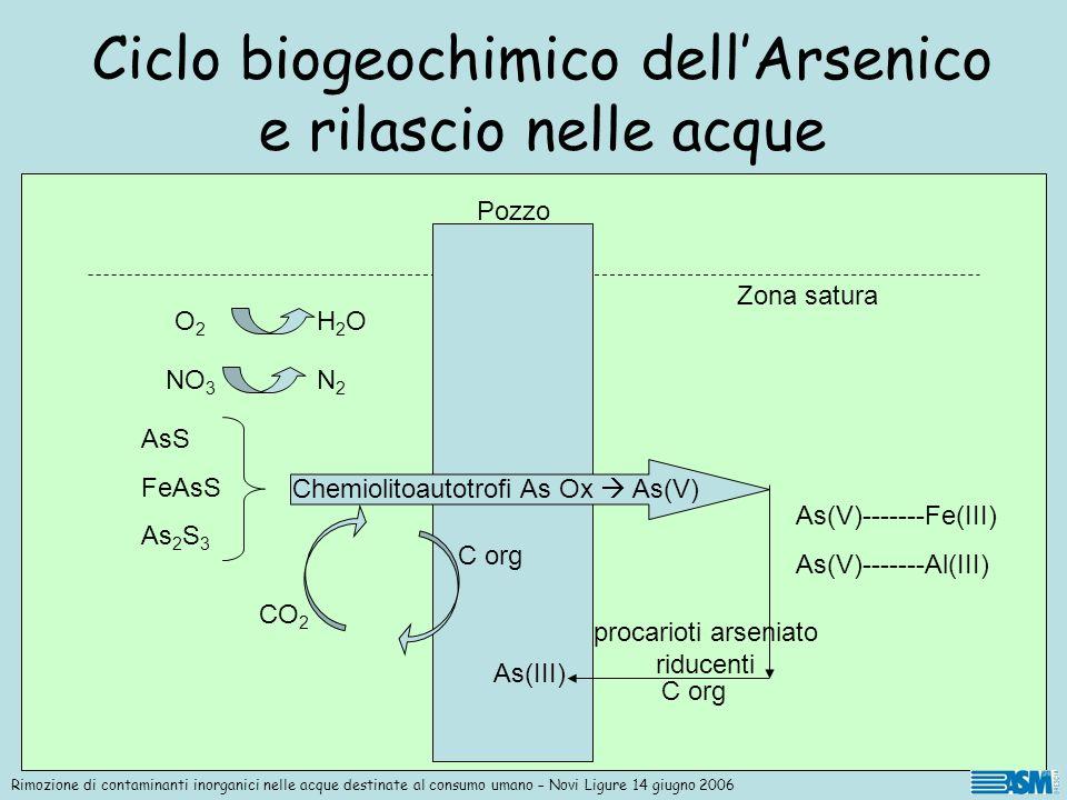Ciclo biogeochimico dell'Arsenico e rilascio nelle acque