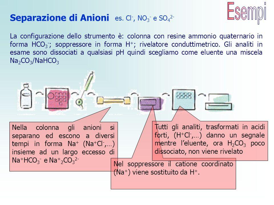 Esempi Separazione di Anioni es. Cl-, NO3- e SO42-