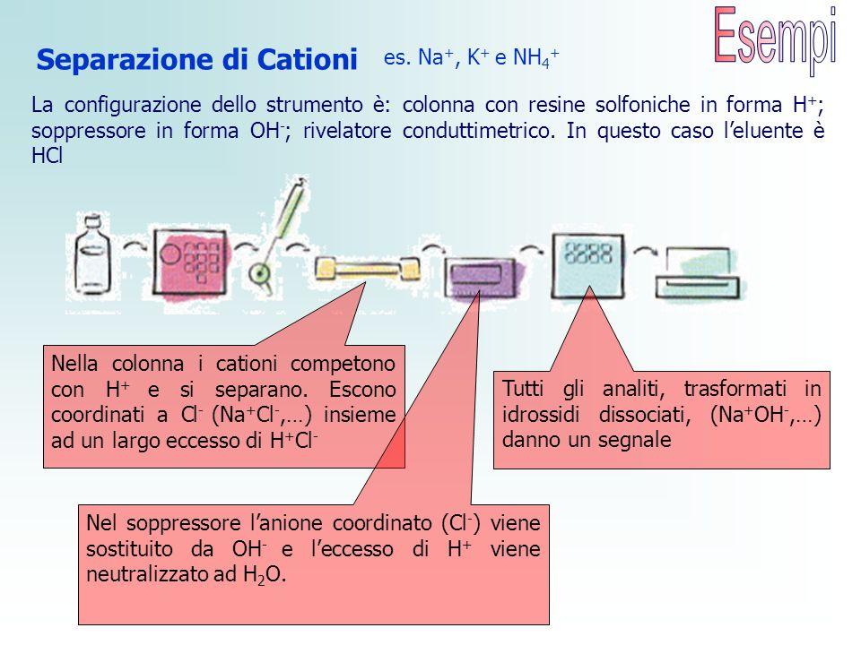 Esempi Separazione di Cationi es. Na+, K+ e NH4+