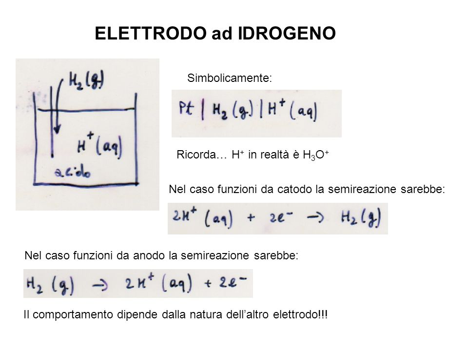 ELETTRODO ad IDROGENO Simbolicamente: Ricorda… H+ in realtà è H3O+