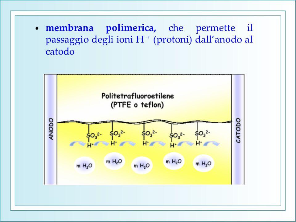 membrana polimerica, che permette il passaggio degli ioni H + (protoni) dall'anodo al catodo