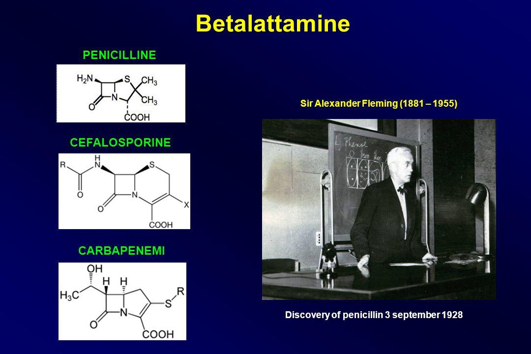 Betalattamine PENICILLINE CEFALOSPORINE CARBAPENEMI