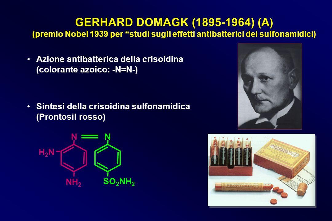 GERHARD DOMAGK (1895-1964) (A) (premio Nobel 1939 per studi sugli effetti antibatterici dei sulfonamidici)