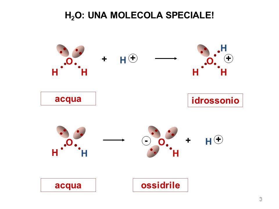 H2O: UNA MOLECOLA SPECIALE!