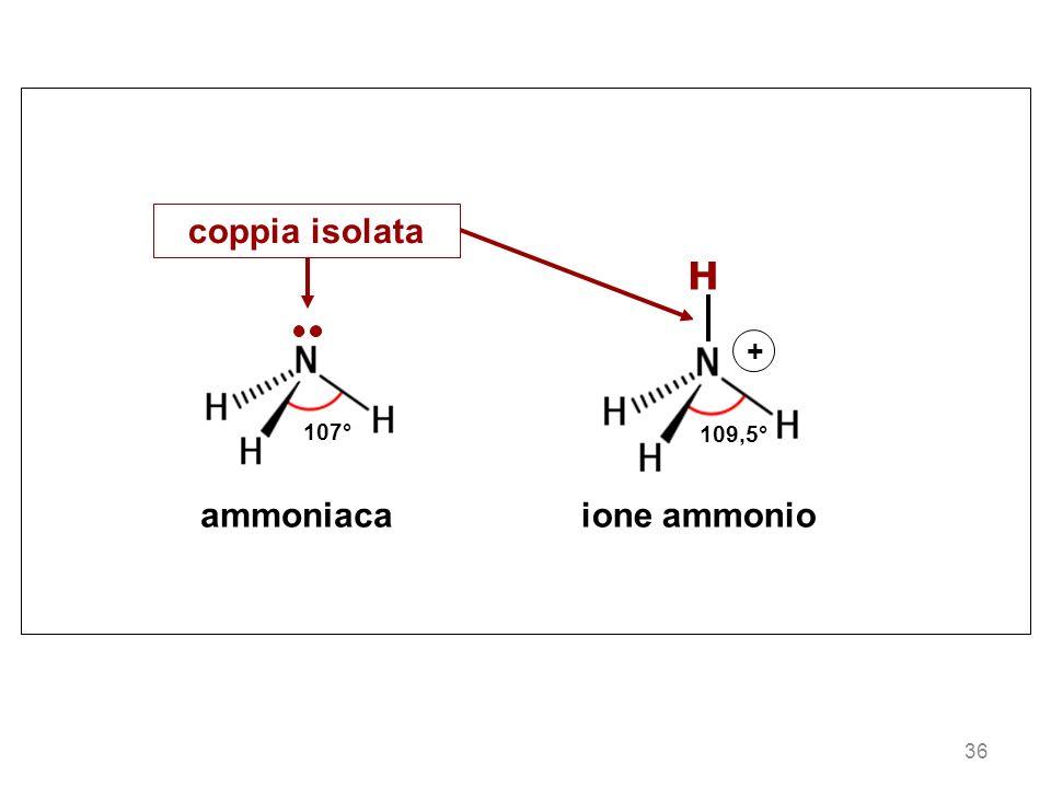 107° ammoniaca ione ammonio 109,5° H + coppia isolata 36