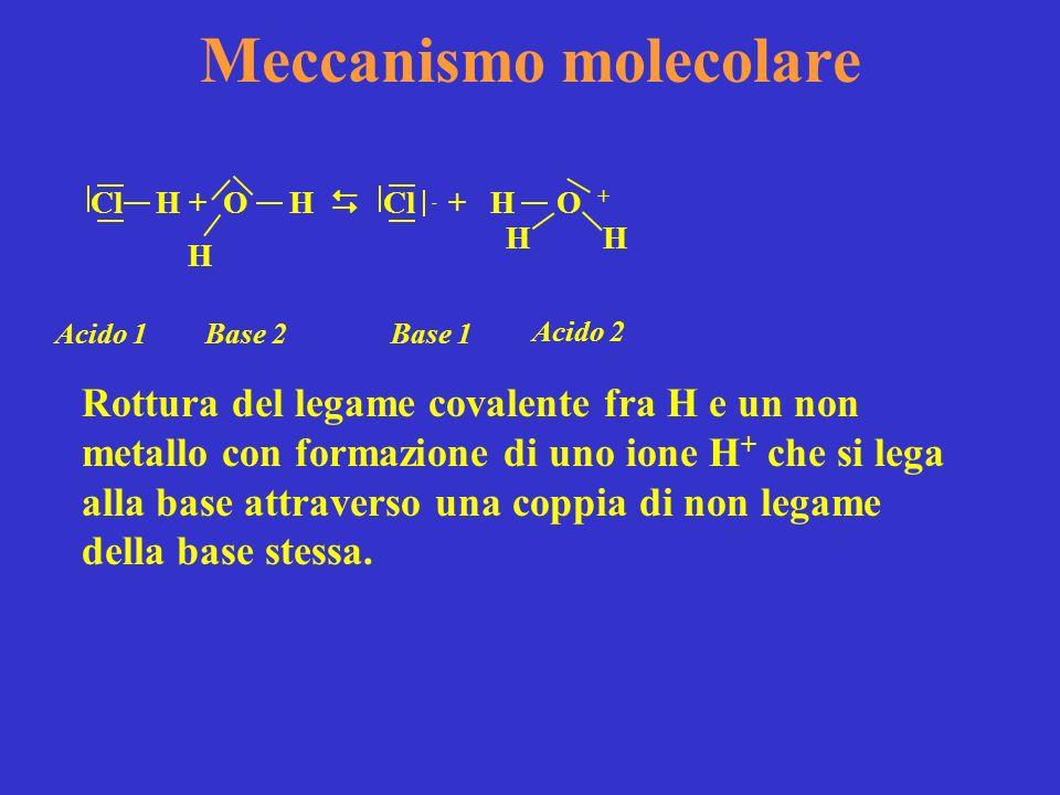 Meccanismo molecolare