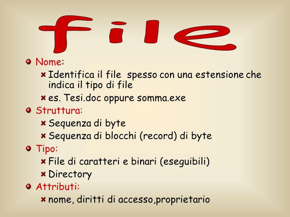 file Nome: Identifica il file spesso con una estensione che indica il tipo di file. es. Tesi.doc oppure somma.exe.