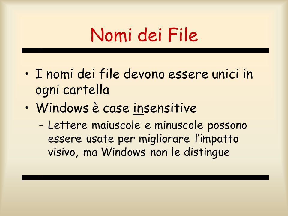 Nomi dei File I nomi dei file devono essere unici in ogni cartella
