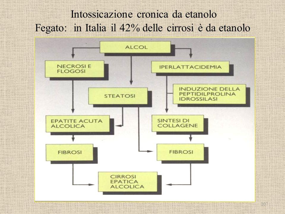 Intossicazione cronica da etanolo Fegato: in Italia il 42% delle cirrosi è da etanolo