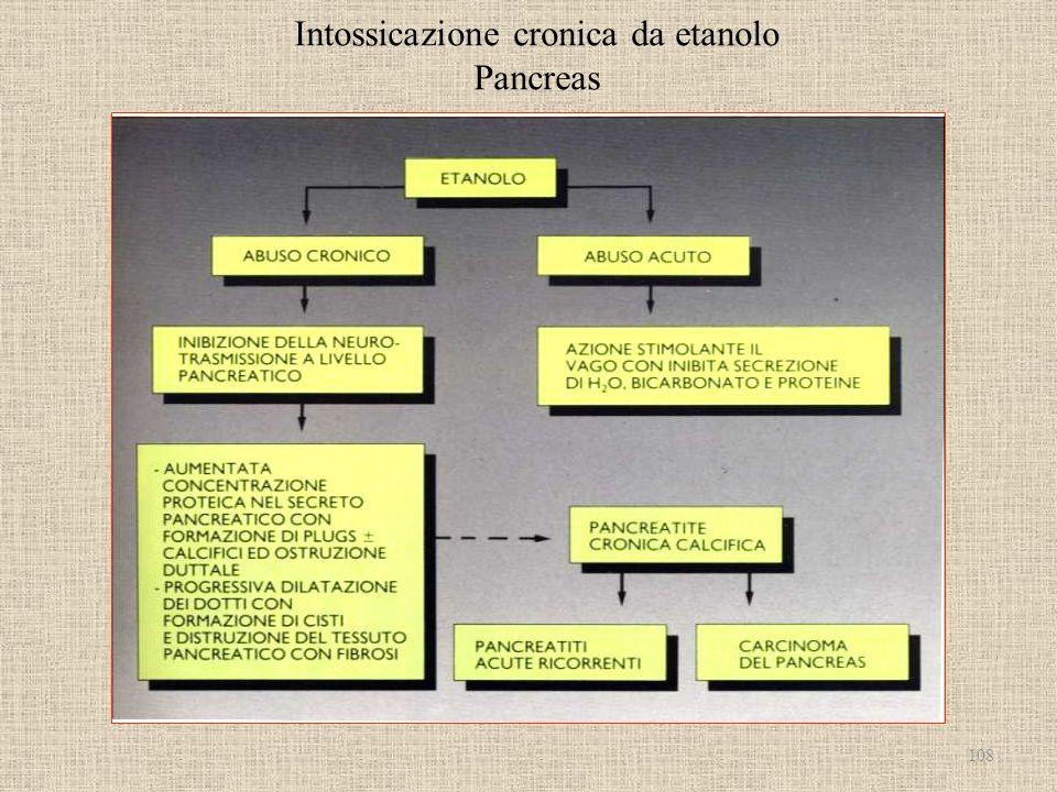 Intossicazione cronica da etanolo Pancreas