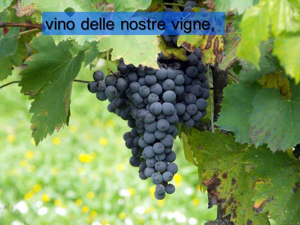 vino delle nostre vigne,