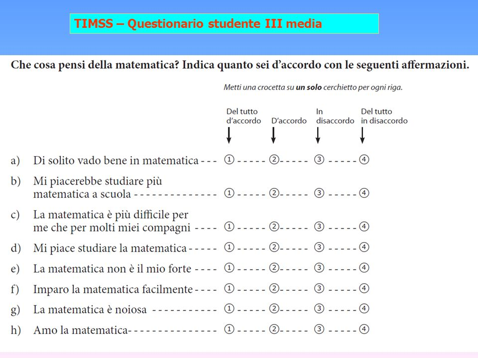 TIMSS – Questionario studente III media
