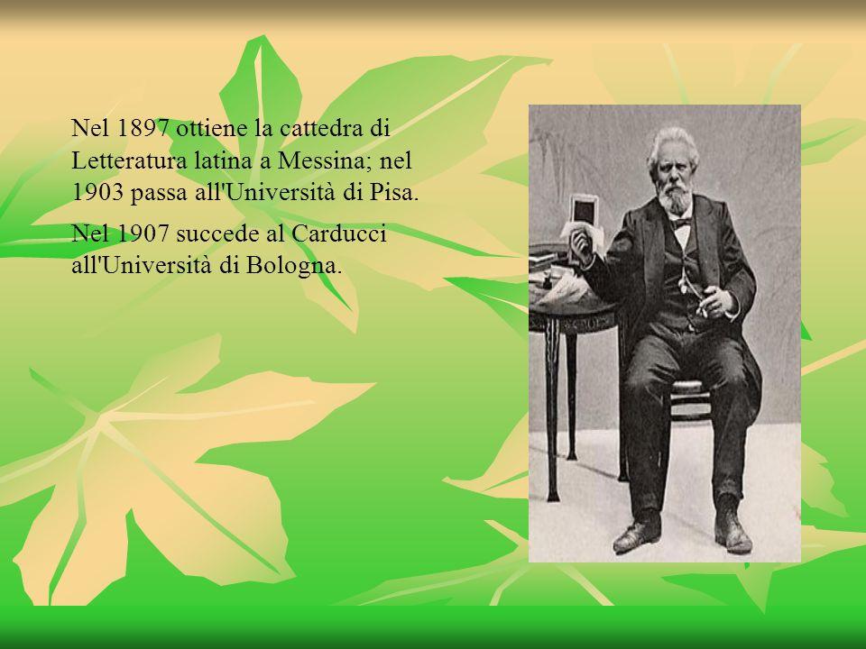 Nel 1897 ottiene la cattedra di Letteratura latina a Messina; nel 1903 passa all Università di Pisa.