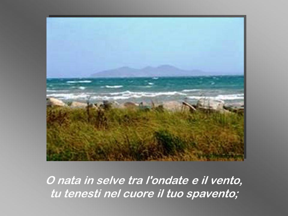 O nata in selve tra l ondate e il vento,