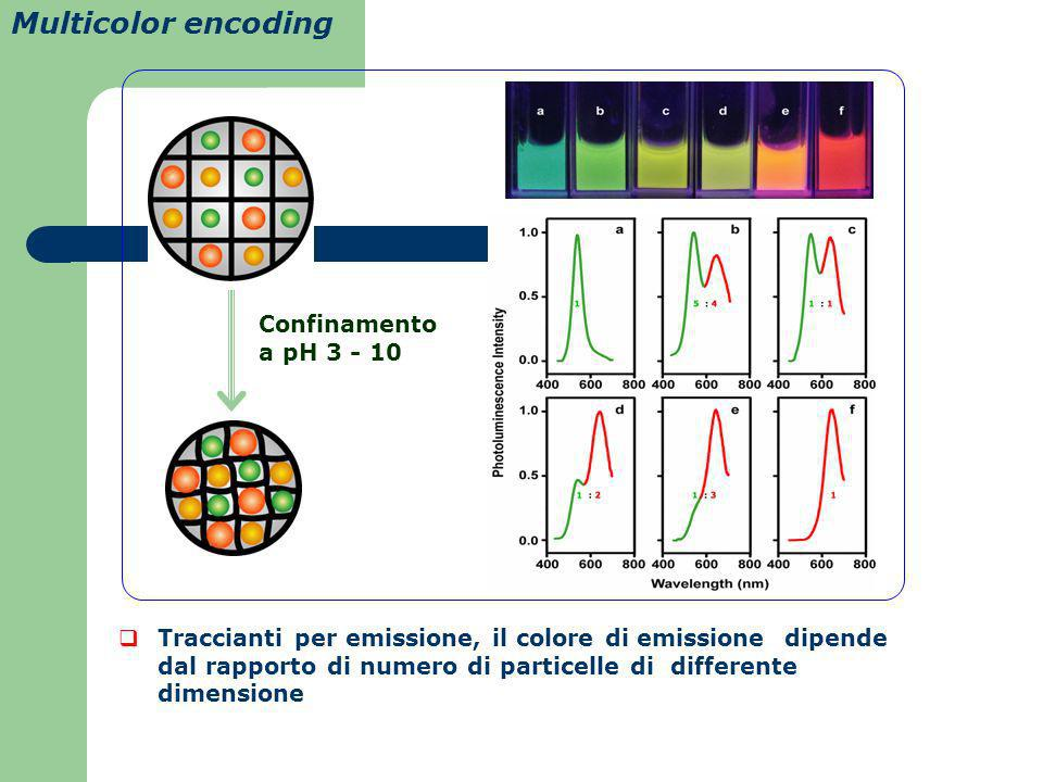 Multicolor encoding Confinamento a pH 3 - 10