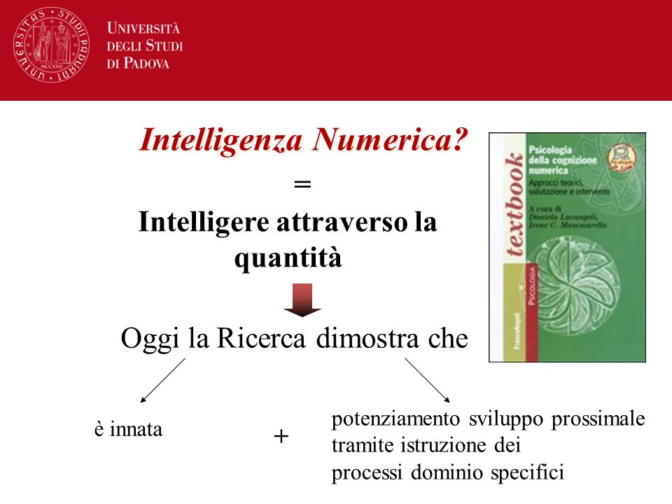 Intelligenza Numerica Intelligere attraverso la quantità