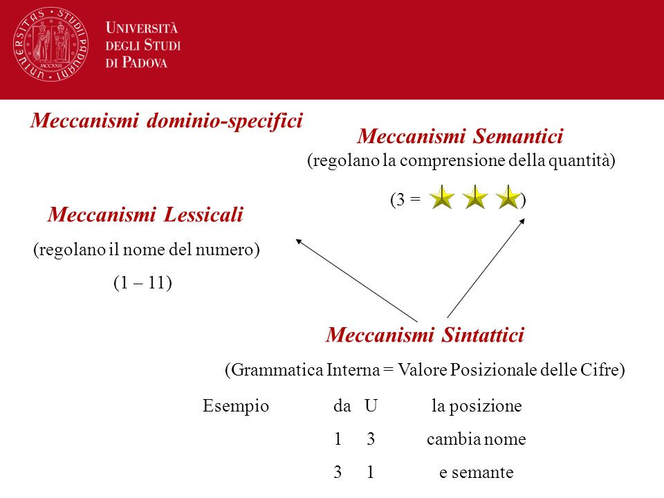 Meccanismi dominio-specifici