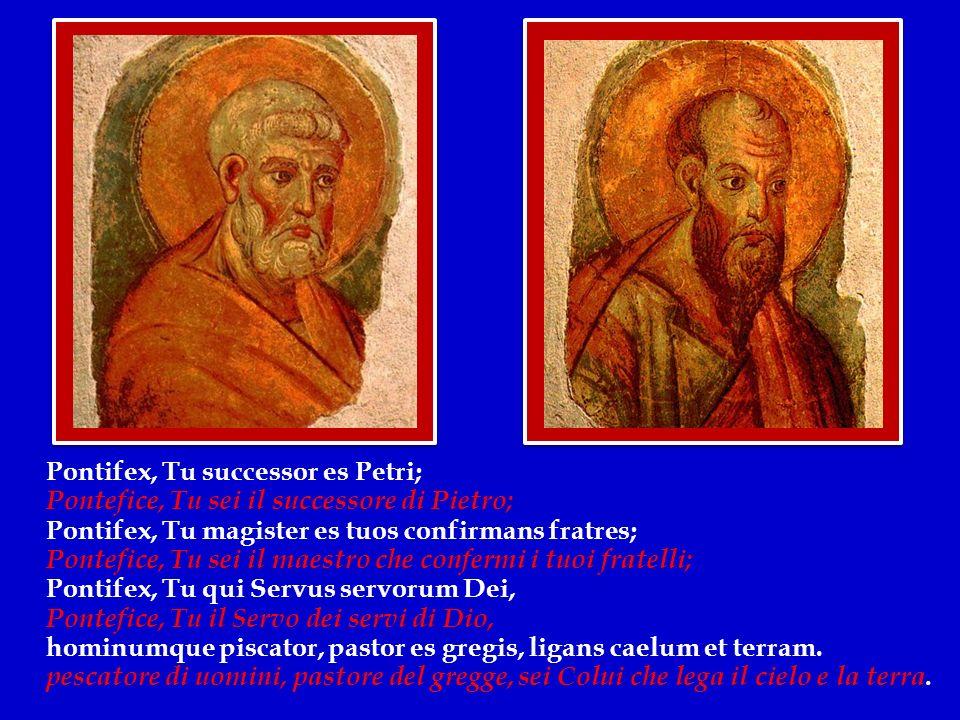 Pontifex, Tu successor es Petri;