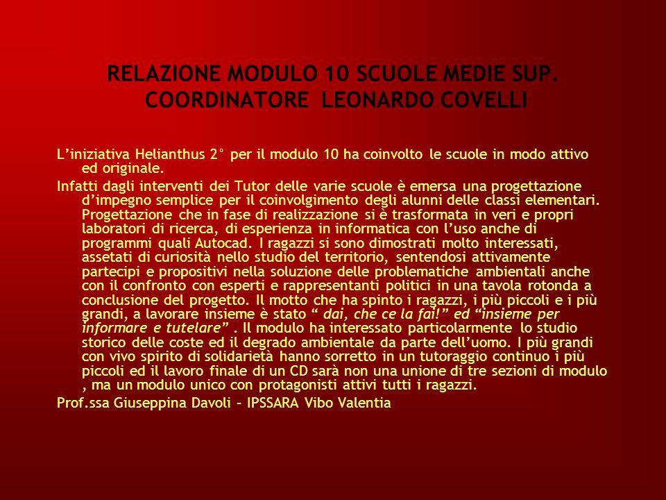 RELAZIONE MODULO 10 SCUOLE MEDIE SUP. COORDINATORE LEONARDO COVELLI
