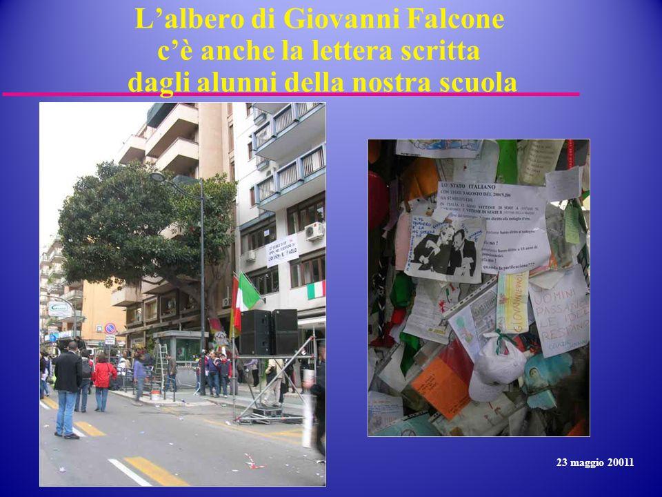L'albero di Giovanni Falcone c'è anche la lettera scritta dagli alunni della nostra scuola