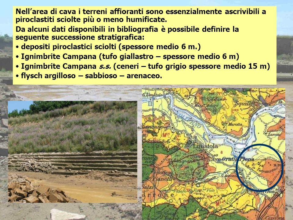 Nell'area di cava i terreni affioranti sono essenzialmente ascrivibili a piroclastiti sciolte più o meno humificate.