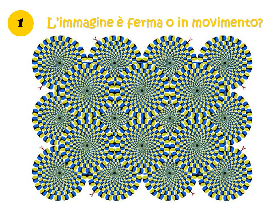 L'immagine è ferma o in movimento