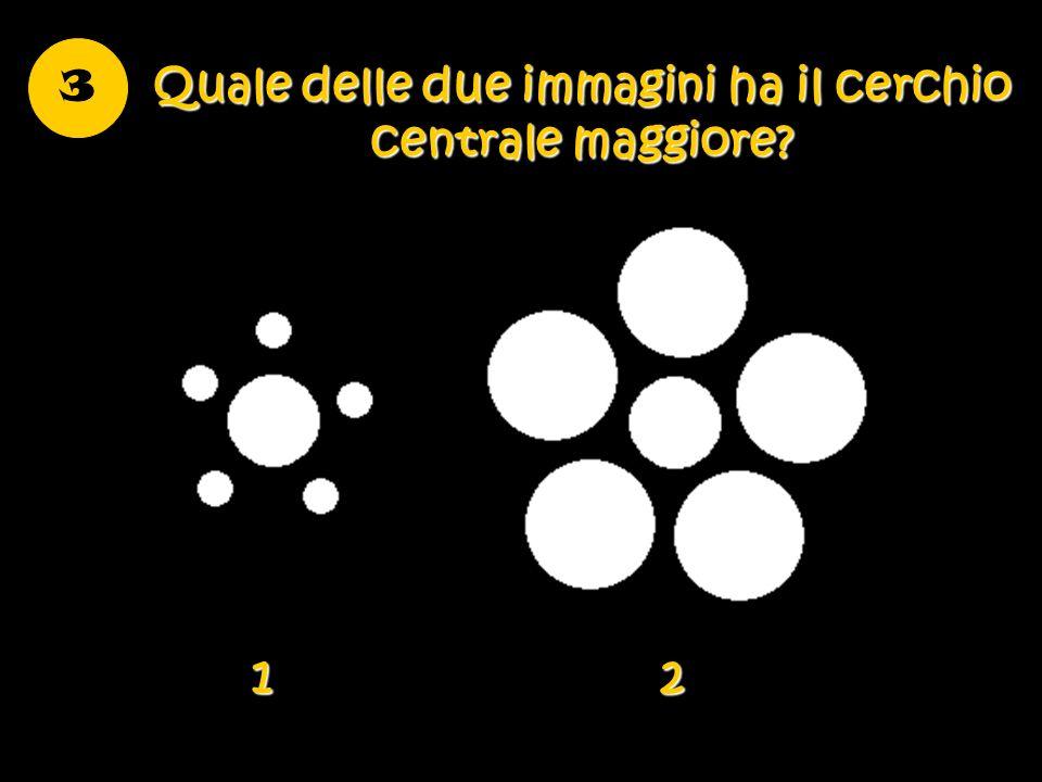Quale delle due immagini ha il cerchio centrale maggiore