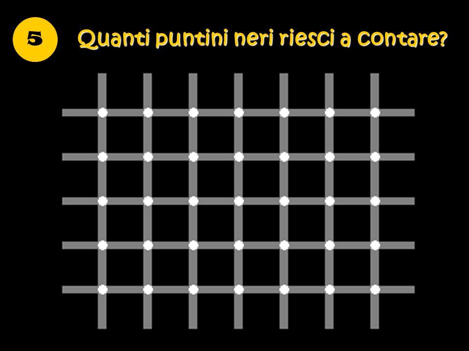 Quanti puntini neri riesci a contare