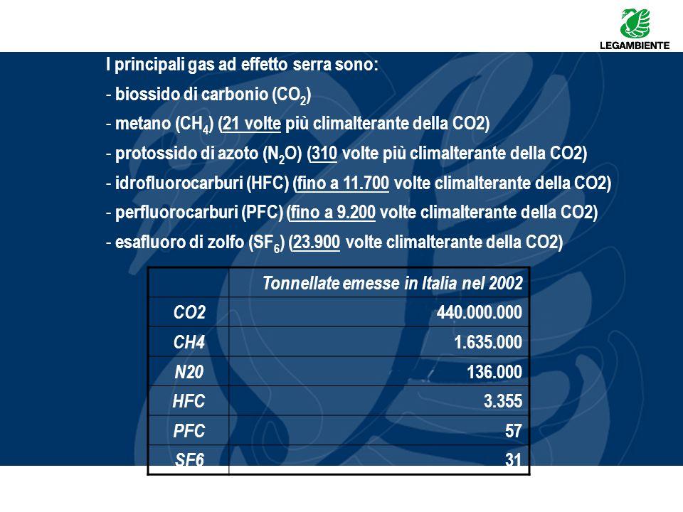 I principali gas ad effetto serra sono: