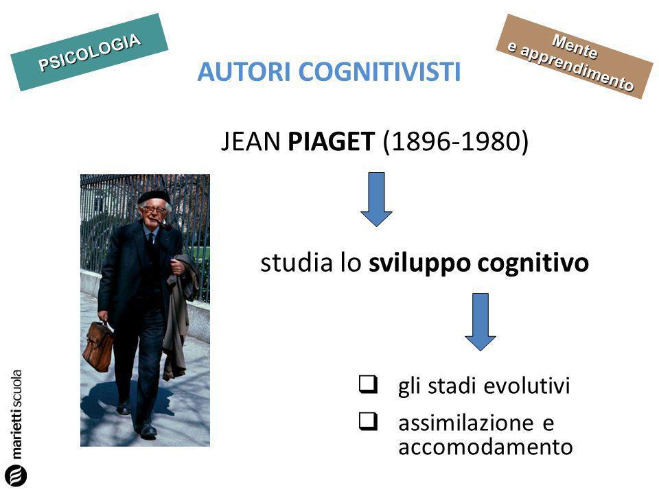 studia lo sviluppo cognitivo