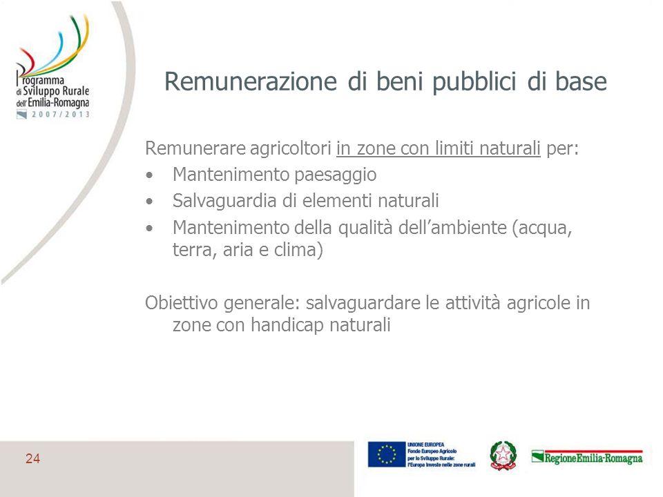 Remunerazione di beni pubblici di base