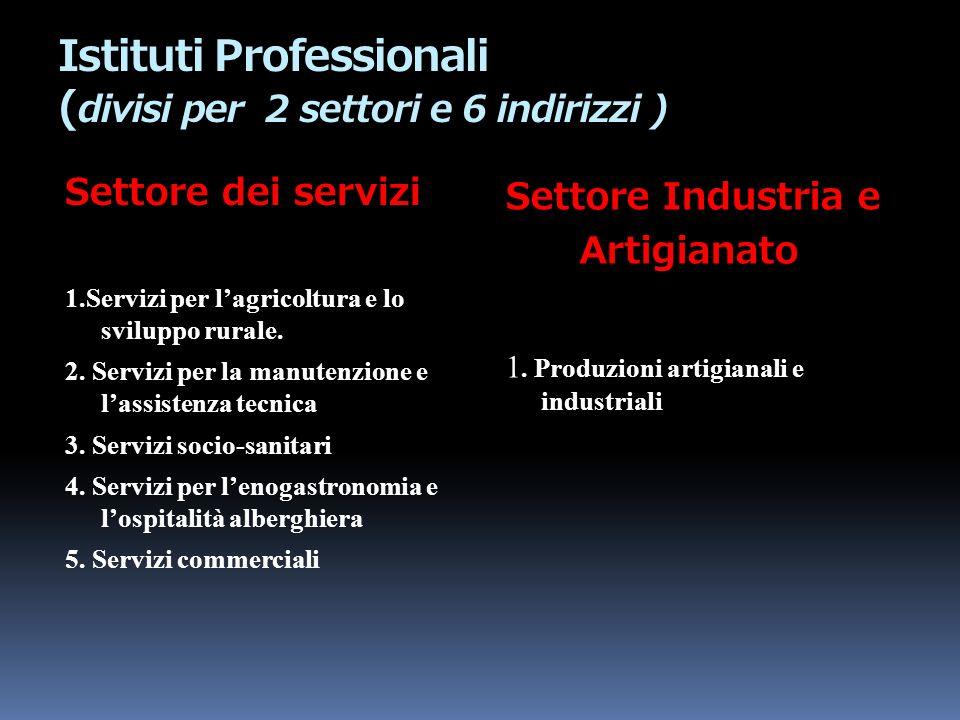 Istituti Professionali (divisi per 2 settori e 6 indirizzi )