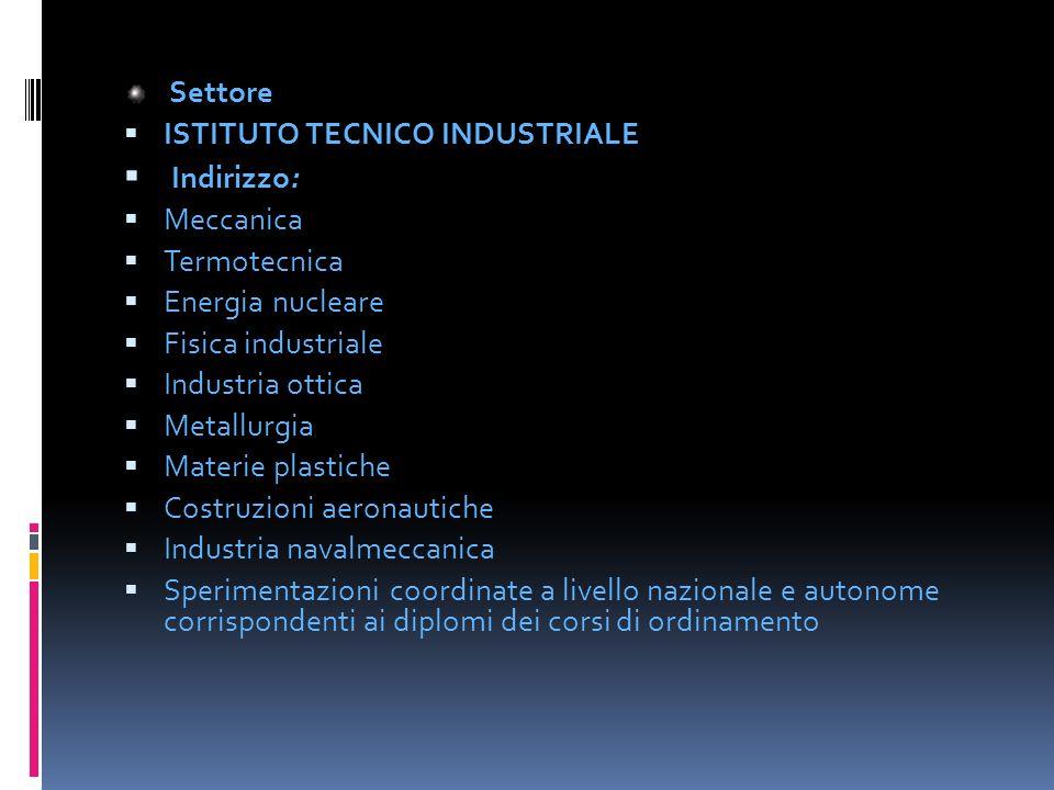 Indirizzo: Settore ISTITUTO TECNICO INDUSTRIALE Meccanica Termotecnica